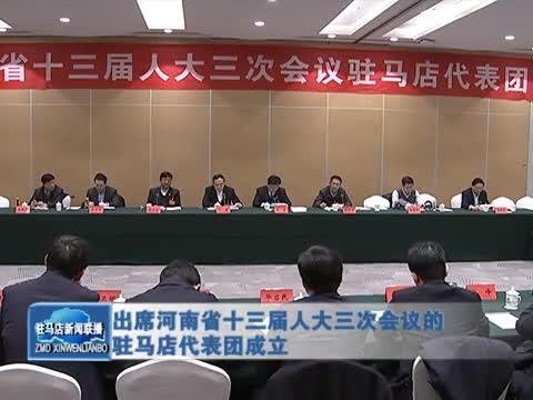 出席河南省十三屆人大三次會議的駐馬店代表團成立