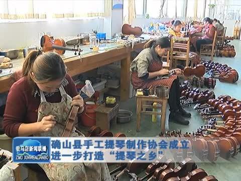确山县手工提琴制作协会成立