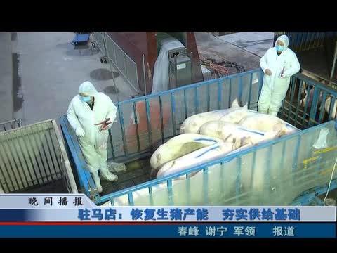 驻马店恢复生猪产能 夯实供给基础