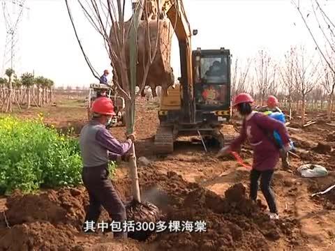 市園林部門開展生態園林綠化建設