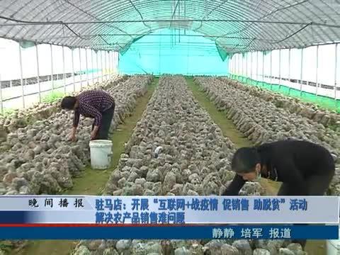 開展互聯網 戰疫情 促銷售 助脫貧活動解決農產品銷售難問題