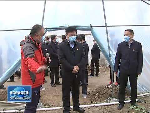 陈星到平舆县调研督导脱贫攻坚企业复工复产和植树造林等工作