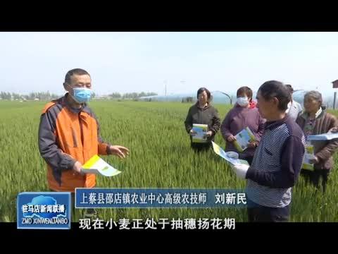 上蔡县积极开展小麦赤霉病防治