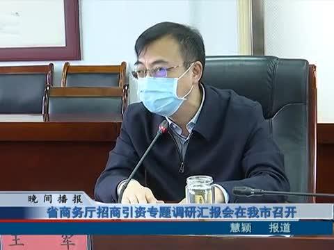 河南省商务厅招商引资专题
