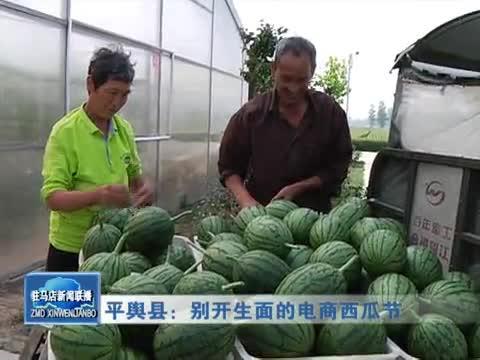 平舆县:别开生面的电商西瓜节