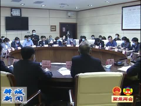 馮磊參加醫藥衛生和特邀界別委員座談討論