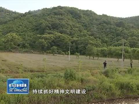 王偉陽:發展特色農業經濟 幫助村民增收致富