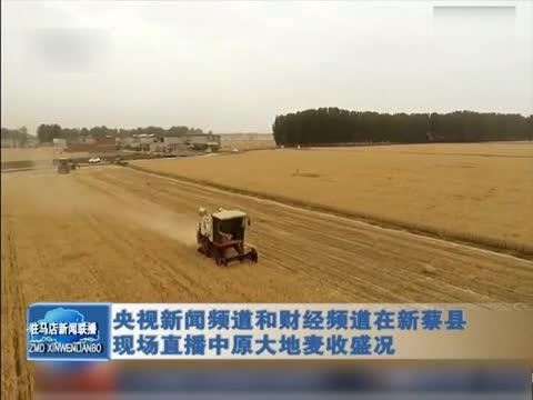 央視新聞頻道和財經頻道在新蔡縣現場直播中原大地麥收盛況
