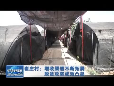 崔庄村:增收渠道不断拓展 脱贫攻坚成效凸显