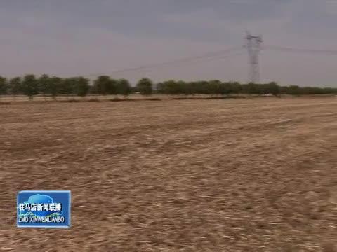 朱是西到上蔡县调研指导抗旱抢种 特色产业发展和脱贫攻坚工作
