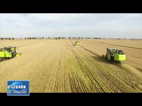 遂平縣:加快農業供給側改革 引領小麥做優做強