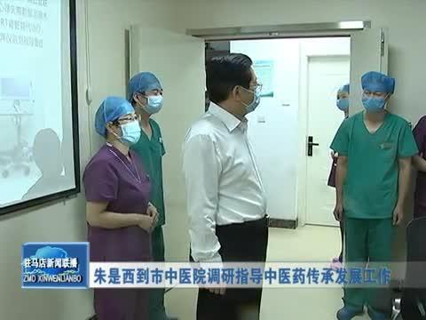 朱是西到市中医院调研指导中医药传承发展工作