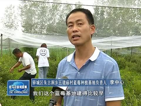 五道庙村:特色种养殖助力致富奔小康