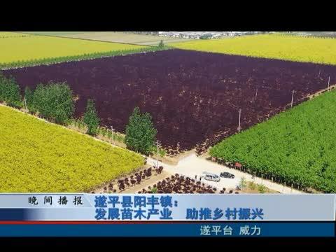 遂平县阳丰镇:发展苗木产业 助推新村振兴