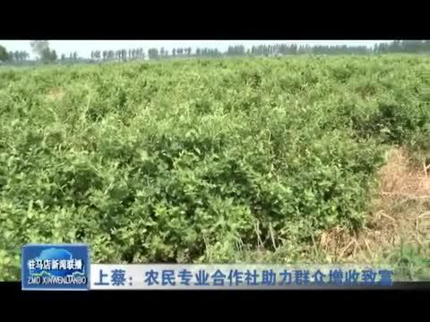 上蔡:农民专业合作社助力群众增收致富