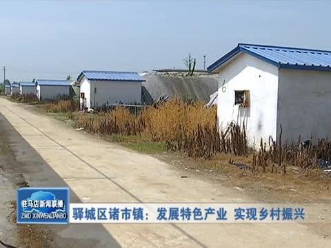 驿城区诸市镇:发展特色产业 实现乡村振兴