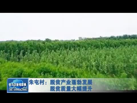 朱屯村:脱贫产业蓬勃发展 脱贫质量大幅提升