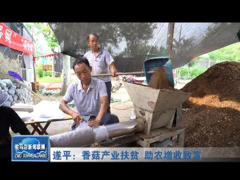 遂平:香菇产业扶贫 助农增收致富