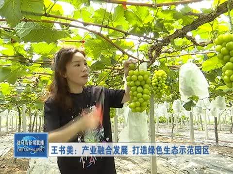 王书美:产业融合发展 打造绿色生态示范园区