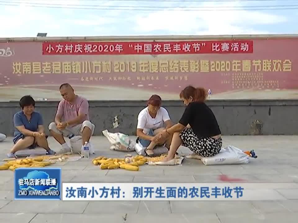 汝南小方村:別開生面的農民豐收節
