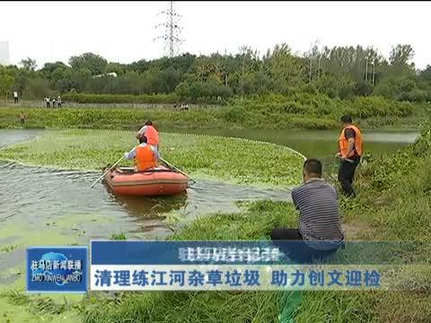 清理练江河杂草垃圾 助力创文迎检