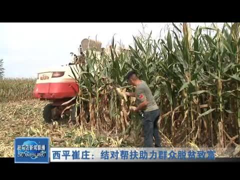 西平崔莊:結對幫扶助力群眾脫貧致富