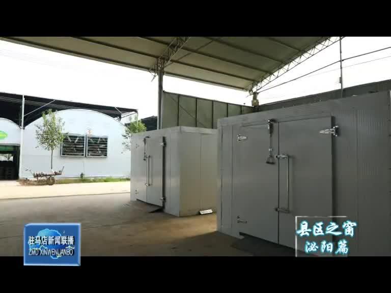 泌阳县全力推进食用菌产业电代煤气化煤双替代工作