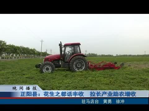 正阳县:花生之都话丰收 拉长产业助农增收