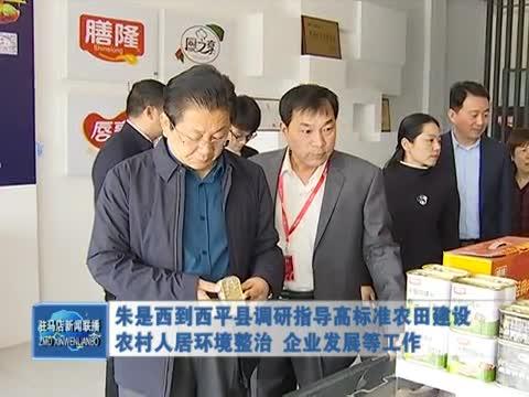 朱是西到西平县调研指导高标准农田建设 农村人居环境整治 企业发展等工作