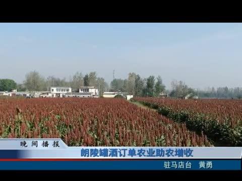 朗陵罐酒订单农业助农增收