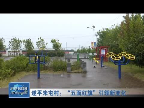 """遂平朱屯村:""""五面红旗""""引领新变化"""