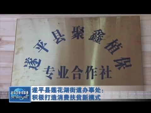 遂平县莲花湖街道办事处:积极打造消费扶贫新模式