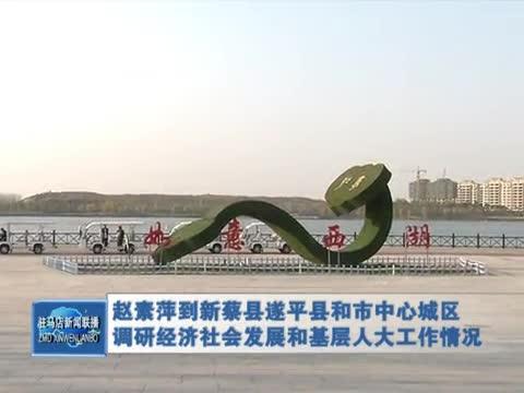 赵素萍到新蔡县遂平县和市中心城区调研经济社会发展和基层人大工作情况