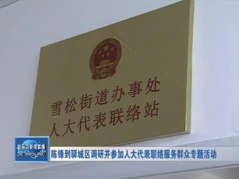 陈锋到驿城区调研并参加人大代表联络服务群众专题活动