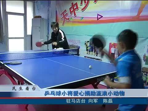 乒乓球小将爱心捐助流浪小动物