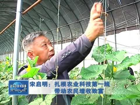 宋启明:扎根农业科技第一线 带动农民增收致富