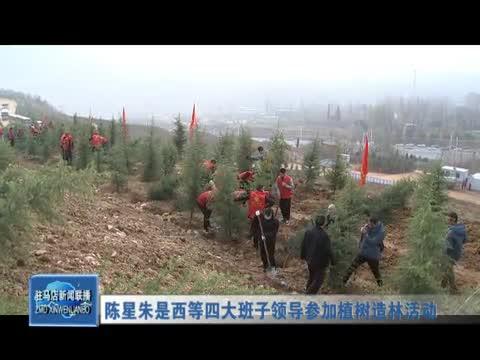 陈星朱是西等四大班子领导参加植树造林活动