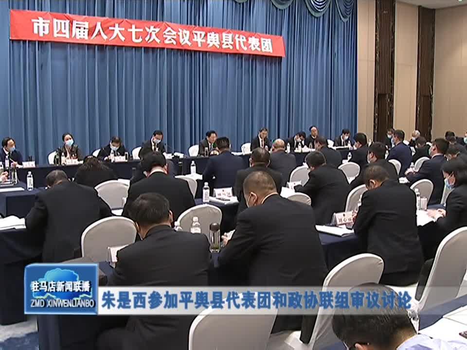 朱是西参加平舆县代表团和政协联组审议讨论
