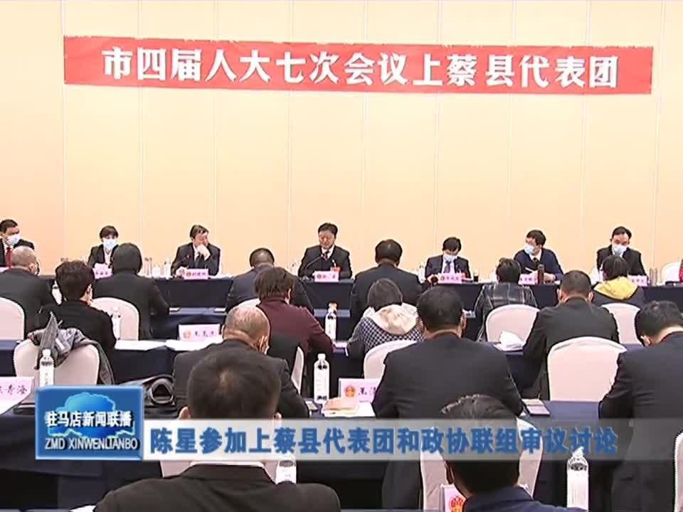 陈星参加上蔡县代表团和政协联组审议会议