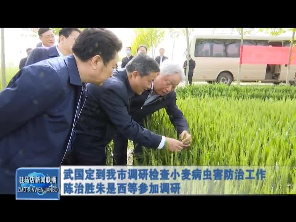 武国定到我市调研检查小麦病虫害防治工作陈治胜朱是西等参加调研