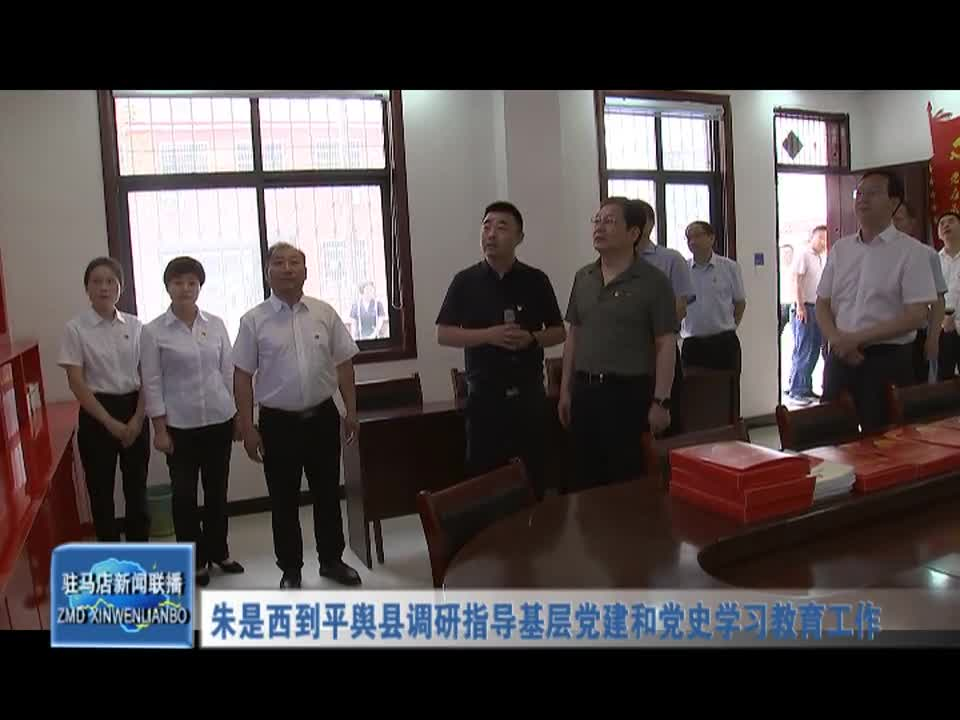 朱是西到平舆县调研指导基层党建和党史学习教育工作