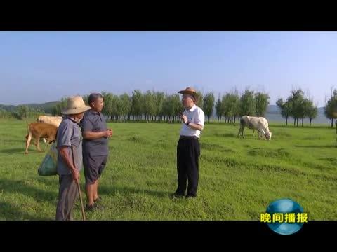 """""""牛人""""祁兴磊:让夏南牛成为乡村振兴助推器"""