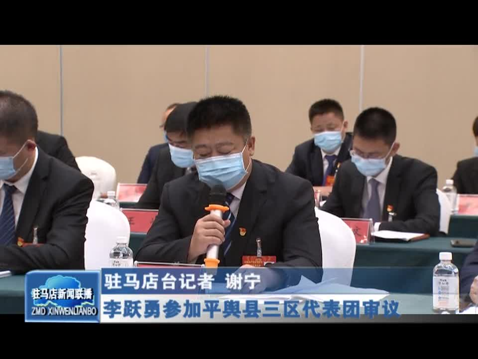李跃勇参加平舆县三区代表团审议