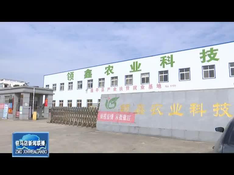 遂平县常庄镇:发展农业化种植带动农民增收致富