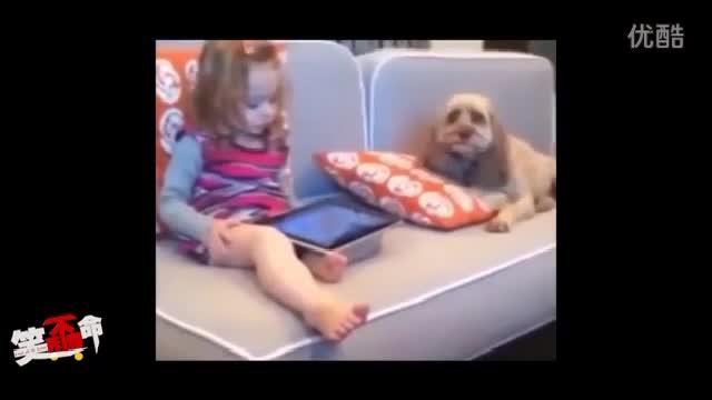 《笑死不偿命:萌娃与萌宠那些搞笑奇葩事》
